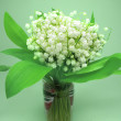 Bouquet of lily of the valley flowers — Stock Photo