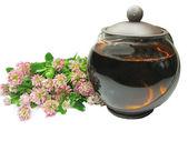 Chá de ervas com extrato de trevo — Fotografia Stock