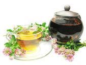Herbal tea in tea-pot with clover — Stock Photo