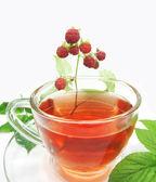 Fruit raspberry thee — Stockfoto