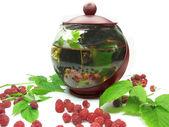 除新鲜树莓的茶壶 — 图库照片
