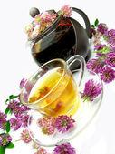 Chá de ervas com flores de trevo — Fotografia Stock