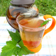 Fruit tea with currant extract outdoors — Stock Photo #11155227