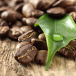 Photo of fresh coffee — Stock Photo #10829224