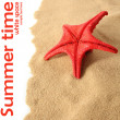 Summer time — Stock Photo #11003526