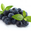 Stock Photo: Fresh fruits of blueberry on white