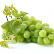Green grapes — Stock Photo #11694758