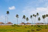 Pavilony pod palmami na pobřeží thajského zálivu — Stock fotografie
