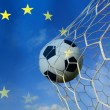 Stock Photo: Soccer ball in european