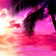 Stock Photo: Sunset Beach