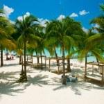 Caribbean Beach. Paradise Resort — Stock Photo #11103926