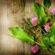 Stock Photo: Herbs over Wood. Herbal Medicine. Herbal Background