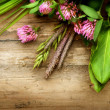 Herbs over Wood. Herbal Medicine. Herbal Background — Stock Photo #11103993