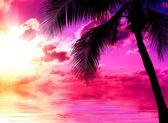 Puesta de sol playa — Foto de Stock