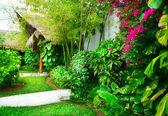 Diseño de paisajismo exótico — Foto de Stock