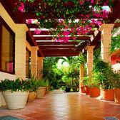 有花的房子的园景的露台 — 图库照片