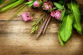 Erbe sopra legno. medicina di erbe. sfondo alle erbe — Foto Stock