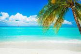 παραλία — Φωτογραφία Αρχείου