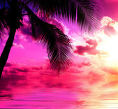 Sunset beach — Stok fotoğraf