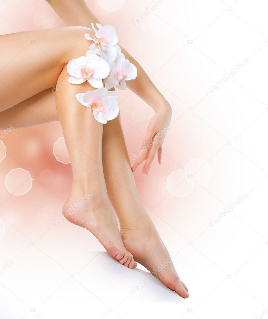 Healthy Legs. Spa. Long woman legs isolated on white — Stock Photo #11104023