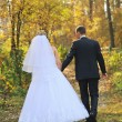 Newlyweds walking in autumn forest — Stock Photo