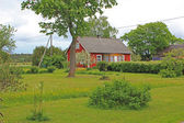 Red house and green garden — Stock Photo