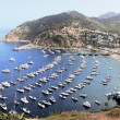Avalon Harbor Catalina Islanc — Stock Photo