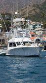 Moored Sportfisher Yacht — Stock Photo