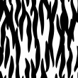 Zebra skin seamless pattern - Stock Vector