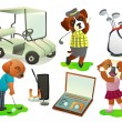 Set of golf — Stock Vector