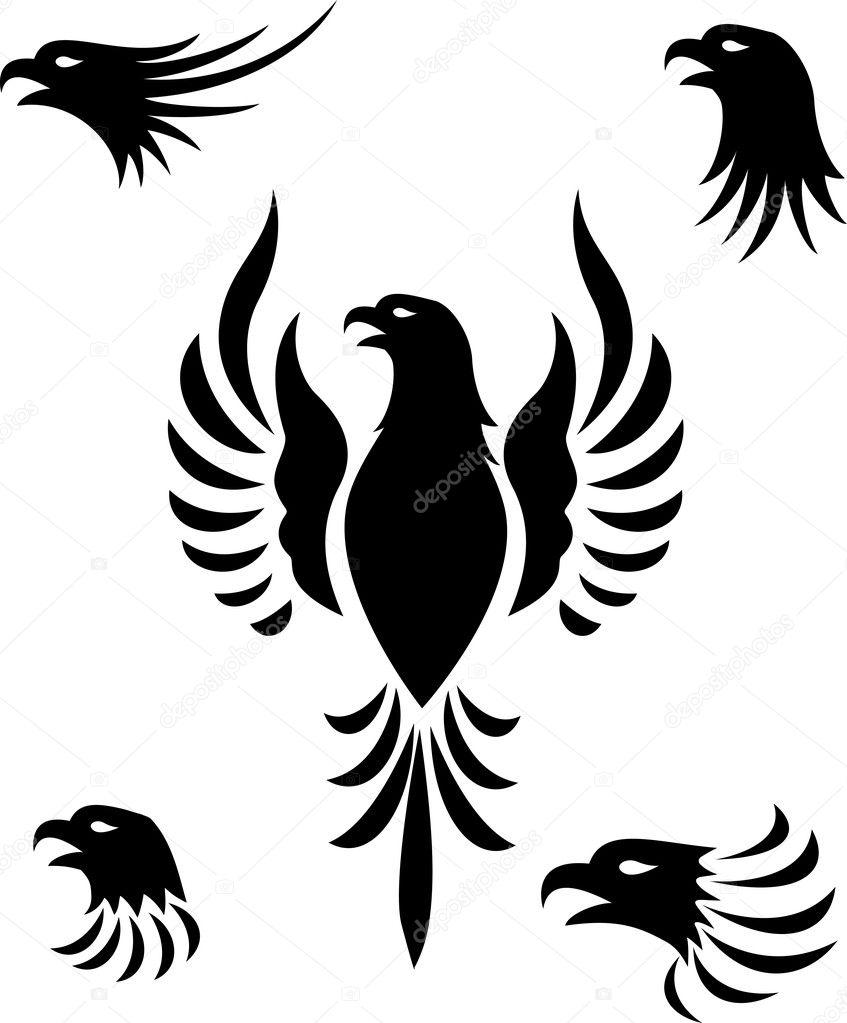 Vector illustration of Eagle  Eagle Head Vector