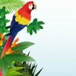 Macaw with tropical beach background — Stock Vector