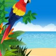 Stock Vector: Macaw with tropical beach background