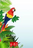 Macaw with tropical beach background — 图库矢量图片