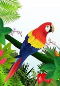 Pájaro guacamayo en el bosque tropical — Vector de stock