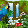 Stock Vector: Macaw bird with waterfall background