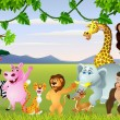 Funny safari animal cartoon — Image vectorielle