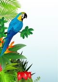 Macaw bird in the tropical forest — Stock Vector