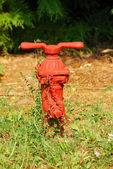 Small Hydrant — Stock Photo