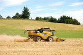 Wheat Combine — Stock Photo