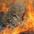 Stock Photo: Fire and Rock