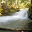 Stock Photo: Whitehorse Falls