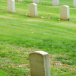 Tombstones — Stock Photo #11316532