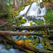 Clearwater Falls — Stock Photo