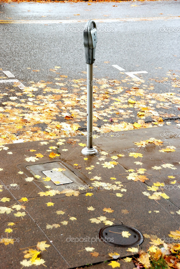 Fall Leaves and a Parking Meter, Jackson Street, Photos taken during the 2008 Veterans Day Parade in Downtown Roseburg OR — Stock Photo #12126112