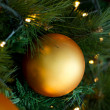 Christmas bauble — Stock Photo #12003717