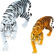 Stock Vector: Tigers