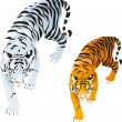 Tigers — Stock Vector