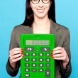 Lets calculate revenue for financial year 2011-12 — Stock Photo