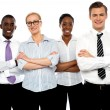Group of business posing with arms crossed — Stock Photo #12131073